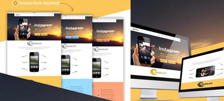CleanUpp Web Tasarımı